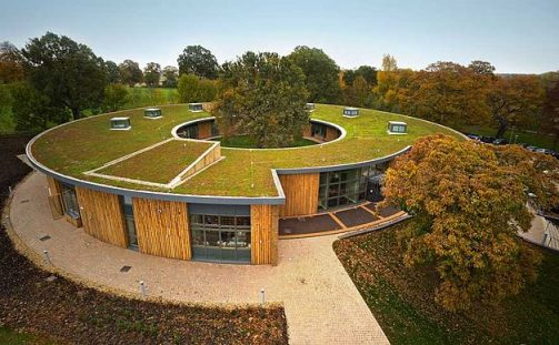 Building Better Homes with Green Roof Systems
