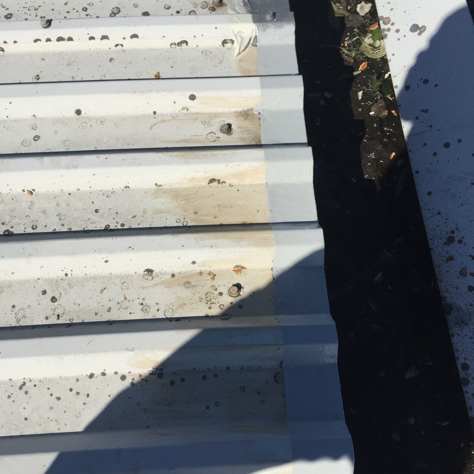Cut Edge Corrosion Roof