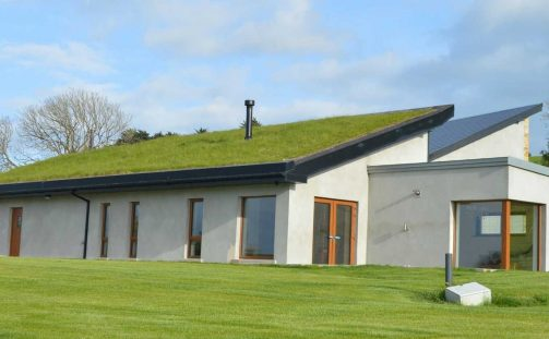 4 Things You Need to Know About Sedum Green Roof