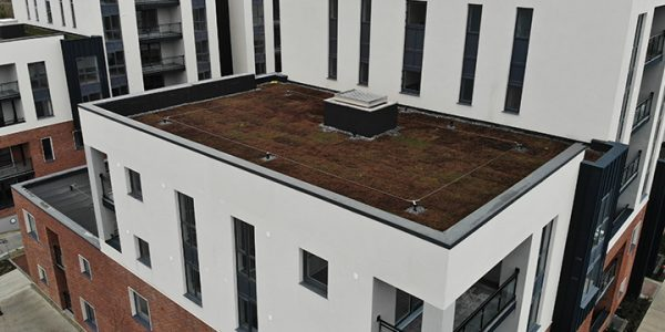 Hansfield Wood Residence – Pluvitec Roof