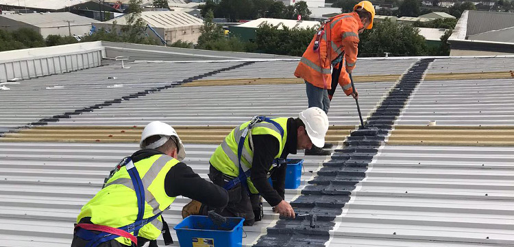 Commercial Building Limerick - Liquiflex-Pro Roofing Refurbishment