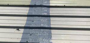 Liquiflex Refurbishment - Corrosion - Roof
