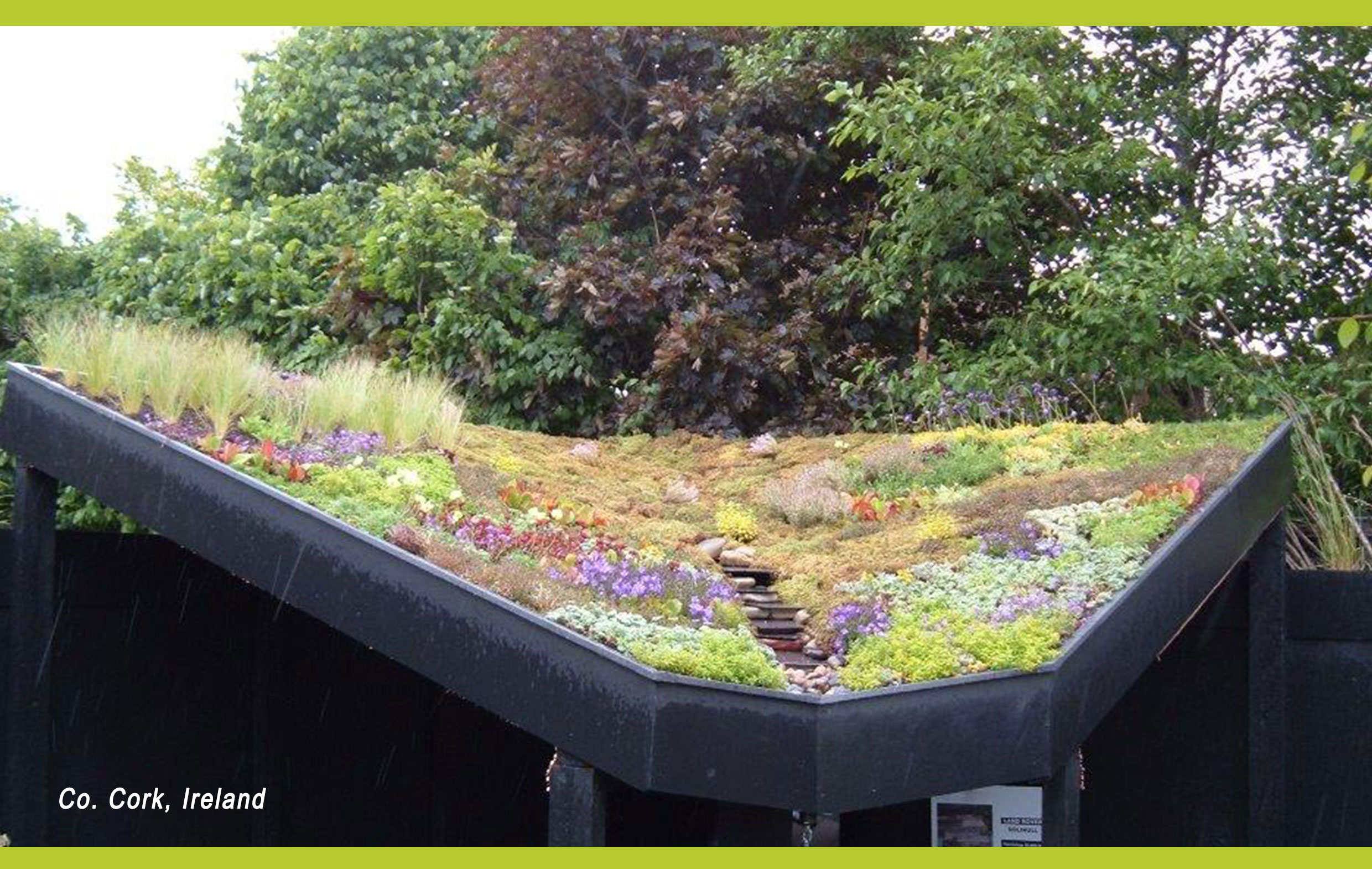 Alkor-Green-Roof-2
