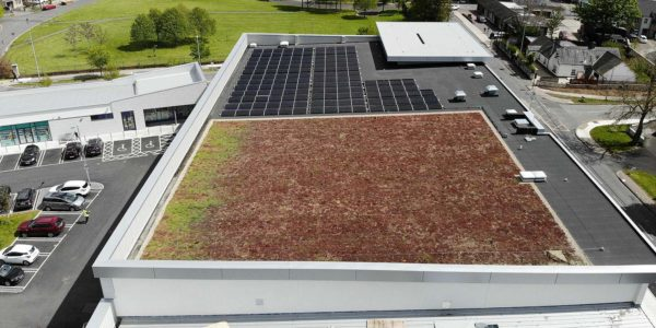 Pluvitec Commercial Green Roof Project – Lidl Clonsilla