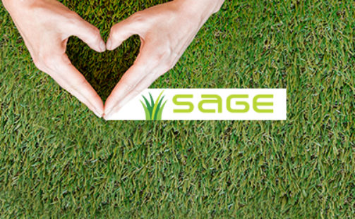 What To Consider Before Installing Artificial Grass
